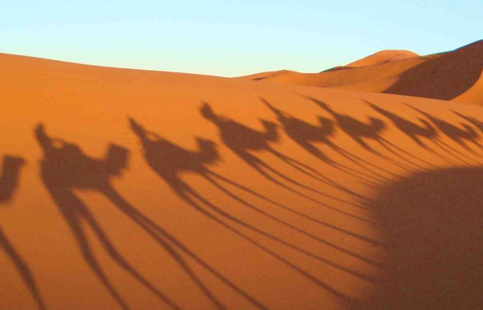 tours from fez to Marrakech