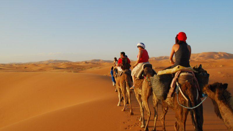 marrakech camel tours