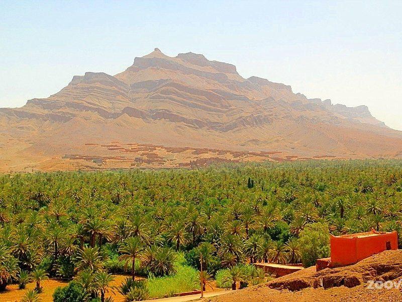 sahara tours marrakech