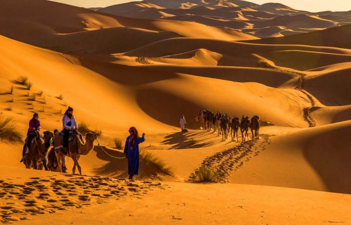 casablanca guided tours