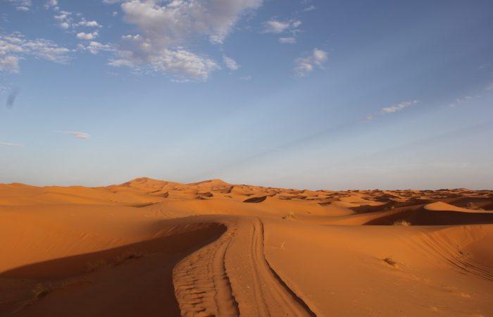go sahara tours